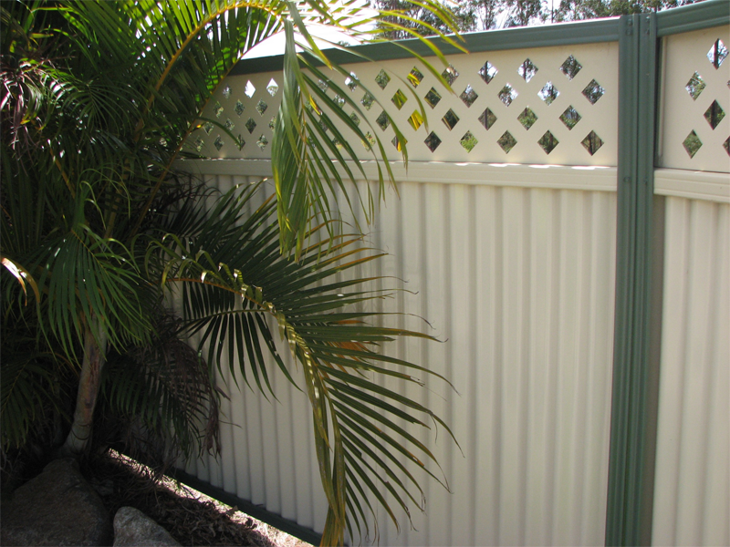 Corodek Colorbond fencing installed with a lattice panel top and a plant in front.